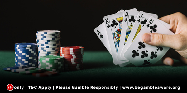What do Live Casino Games Offer?